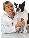 Dog vaccinations